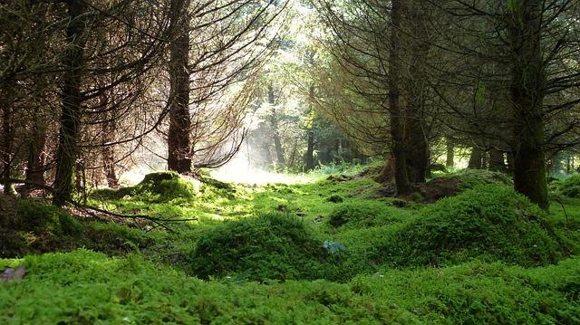 Jak być bardziej eko?